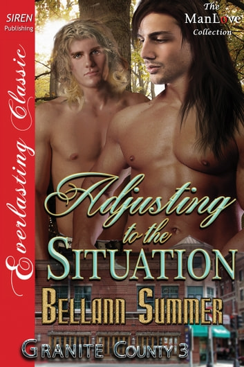 Adjusting to the Situation ebook by Bellann Summer