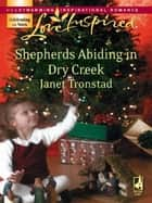 Shepherds Abiding in Dry Creek ebook by Janet Tronstad