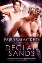 FairySmacked ebook by Declan Sands