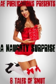 A Naughty Surprise: 8 Tales of Smut ebook by AE Publications