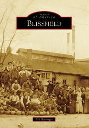 Blissfield ebook by Bob Barringer