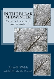 In the Bleak Midwinter ebook by Anne B. Walsh