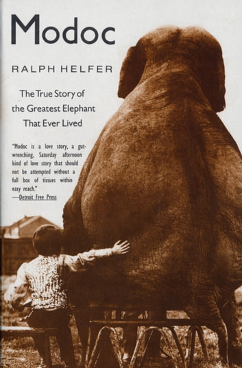 Modoc - True Story of the Greatest Elephant That Ever Lived ebook by Ralph Helfer