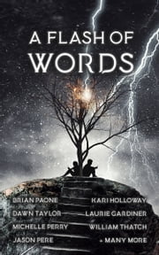 A Flash of Words - 49 Flash-Fiction Stories ebook by Brian Paone, JM Ames, Alanh Andrews,...