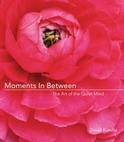 Moments in Between: The Art of the Quiet Mind ebook by Kundtz, David