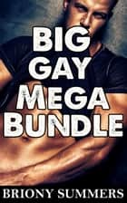 Big Gay Mega Bundle (10 Story Collection) ebook by Briony Summers