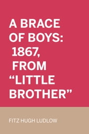"A Brace Of Boys: 1867, From ""Little Brother"" ebook by Fitz Hugh Ludlow"