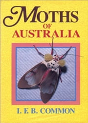 Moths of Australia ebook by IFB Common