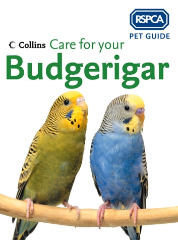Care for your Budgerigar (RSPCA Pet Guide) eBook by RSPCA