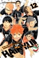 Haikyu!!, Vol. 12 - The Tournament Begins! ebook by Haruichi  Furudate