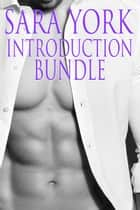 Sara York Introduction Bundle ebook by Sara York