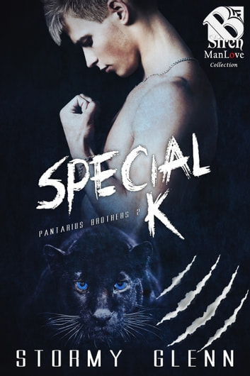 Special K ebook by Stormy Glenn