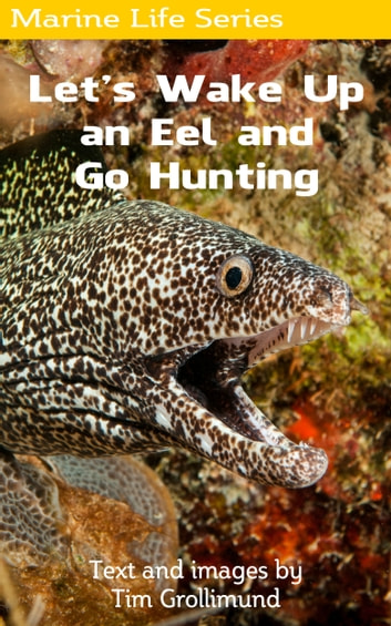 Let's Wake Up an Eel and Go Hunting ebook by Tim Grollimund