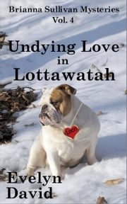 Undying Love in Lottawatah ebook by Evelyn David