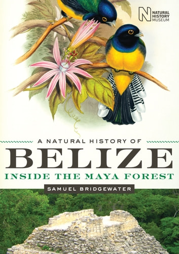 A Natural History of Belize - Inside the Maya Forest ebook by Samuel Bridgewater