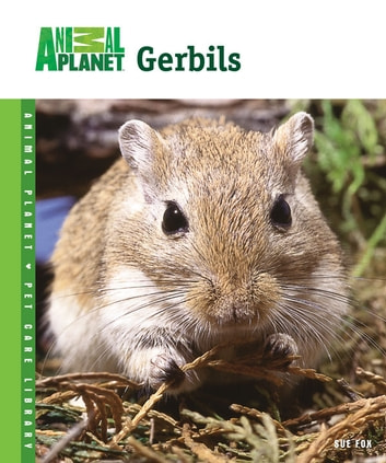 Gerbils ebook by Sue Fox