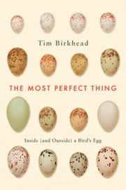 The Most Perfect Thing - Inside (and Outside) a Bird's Egg ebook by Tim Birkhead