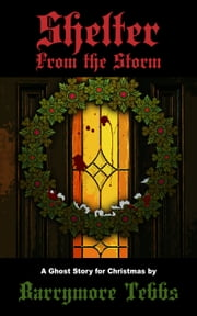 Shelter From the Storm: A Ghost Story for Christmas ebook by Barrymore Tebbs