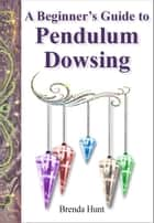 A Beginners Guide to Pendulum Dowsing ebook by Brenda Hunt