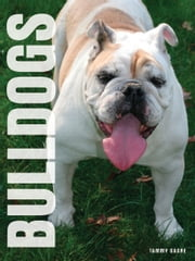 Your Bulldog