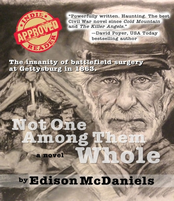 NOT ONE AMONG THEM WHOLE - A Novel of Surgeons and the Wounded at Gettysburg ebook by Edison McDaniels