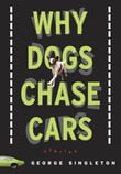 Why Dogs Chase Cars