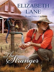 The Stranger ebook by Elizabeth Lane