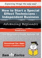 How to Start a Special Effect Technicians - Independent Business ebook by Chi Coyle
