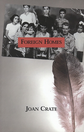 Foreign Homes ebook by Joan Crate