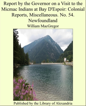Report by the Governor on a Visit to the Micmac Indians at Bay D'Espoir: Colonial Reports, Miscellaneous. No. 54. Newfoundland ebook by William MacGregor