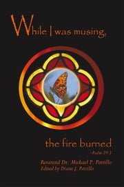While I Was Musing, the Fire Burned ebook by Michael P. Petrillo, PhD
