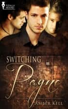 Switching Payne ebook by Amber Kell