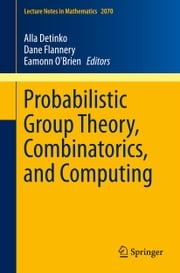 Probabilistic Group Theory, Combinatorics, and Computing - Lectures from the Fifth de Brún Workshop ebook by Alla Detinko,Dane Flannery,Eamonn O'Brien