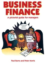 Business Finance: A Pictorial Guide for Managers ebook by Burns, Paul