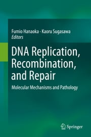 DNA Replication, Recombination, and Repair - Molecular Mechanisms and Pathology ebook by Fumio Hanaoka,Kaoru Sugasawa