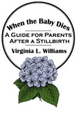When the Baby Dies: A Guide for Parents After a Stillbirth