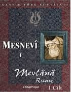 Mesnevi-I ebook by Mevlana Rumi