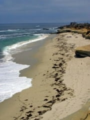 A Tourists Guide To La Jolla, California ebook by Dona Kober
