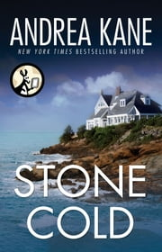 Stone Cold ebook by Andrea Kane