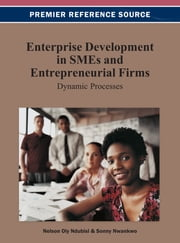 Enterprise Development in SMEs and Entrepreneurial Firms - Dynamic Processes ebook by Nelson Oly Ndubisi,Sonny Nwankwo
