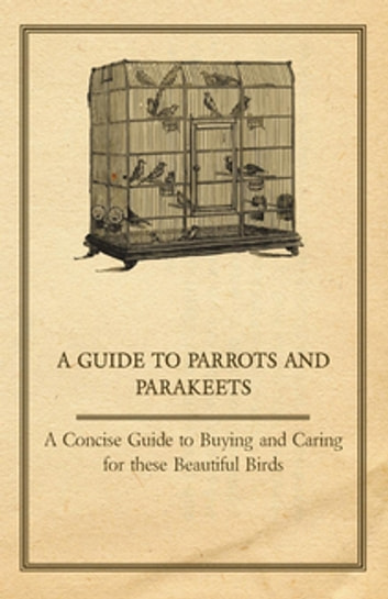 A Guide to Parrots and Parakeets - A Concise Guide to Buying and Caring for these Beautiful Birds ebook by Anon.
