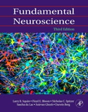Fundamental Neuroscience ebook by Larry Squire,Floyd E. Bloom,Nicholas C. Spitzer,Larry R. Squire,Darwin Berg,Floyd E. Bloom,Sascha du Lac,Anirvan Ghosh,Nicholas C. Spitzer