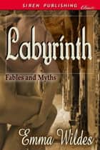Labyrinth ebook by Emma Wildes