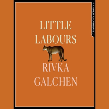 Little Labours audiobook by Rivka Galchen