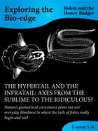 The Hypertail And The Infratail: Axes From The Sublime To The Ridiculous? ebook by Robin and the Honey Badger