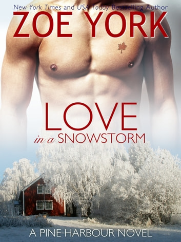 Love in a Snowstorm ebook by Zoe York