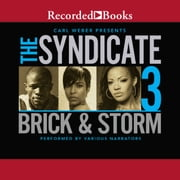 The Syndicate 3 audiobook by Brick, Storm