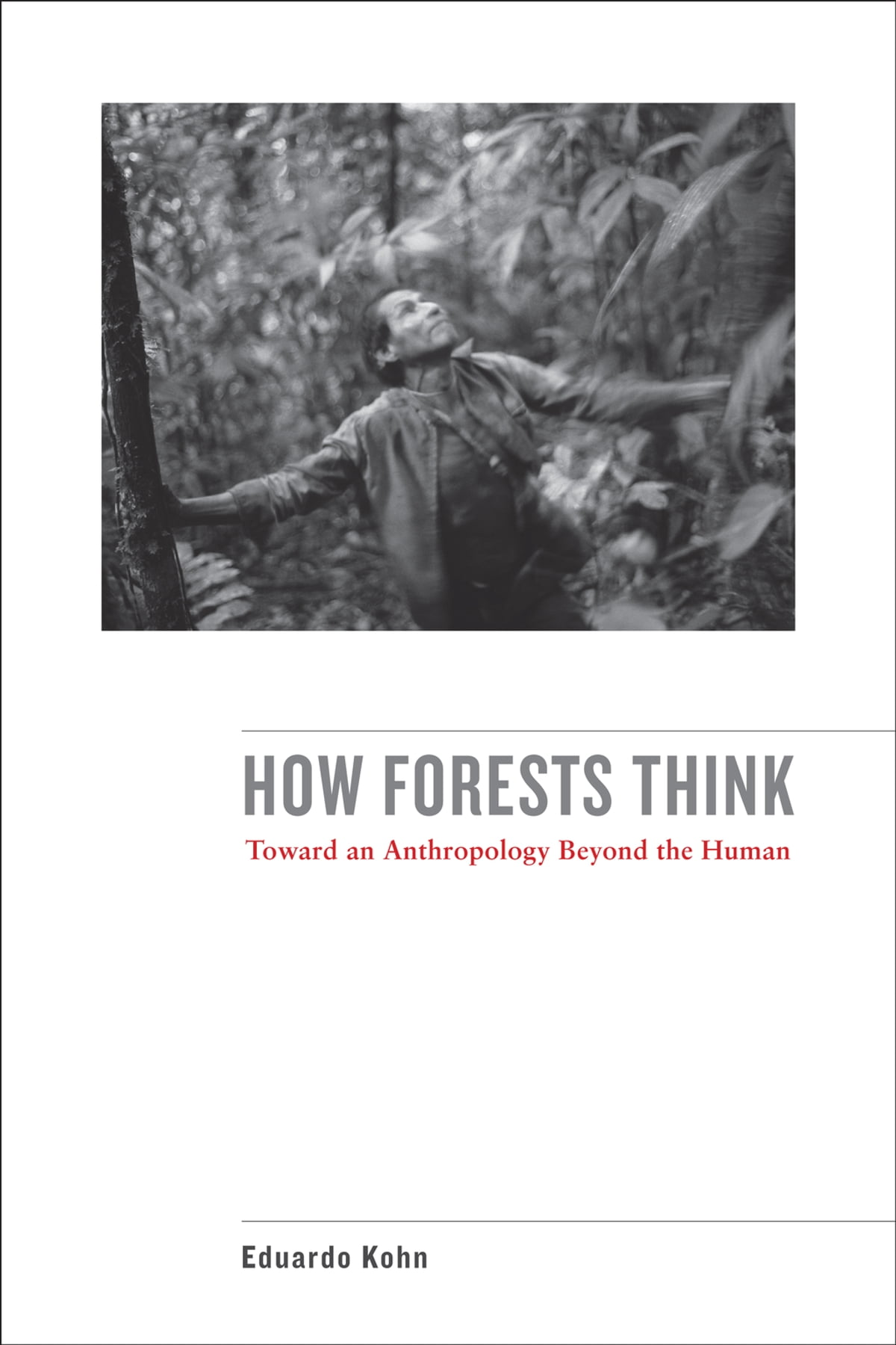 「how forests think」的圖片搜尋結果