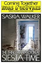 The Things That Go On At Siesta Time ebook by Saskia Walker