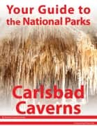 Your Guide to Carlsbad Caverns National Park ebook by Michael Joseph Oswald